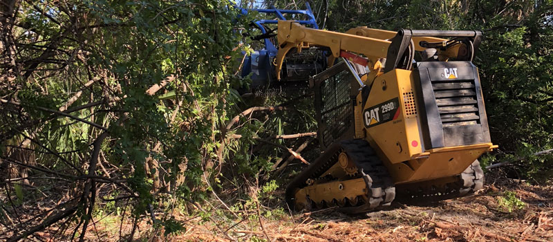 Forest Mulching Southwest Florida | Patriot Site Pros Commercial Land Clearing & Mulching
