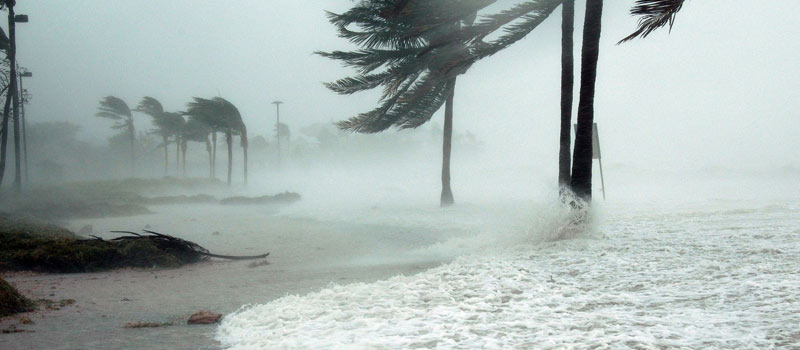 Storm & Hurricane Cleanup | Patriot Site Pros Commercial Land Clearing & Mulching